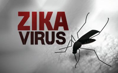 Efficace contro lo Zika Virus
