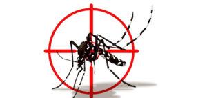Combattere la Zanzara Tigre